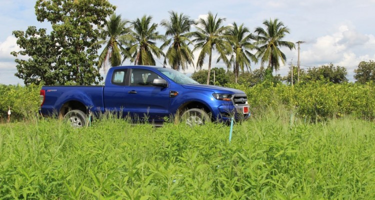 2015 Ford Ranger 2.2l Hi-Rider Mid Power (14)